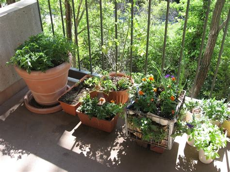 Ideas For Small Balcony Gardens Lawn Garden Narrow Balcony Garden Ideas With Bamboo Deck Floor Ideas 14 Chsbahrain