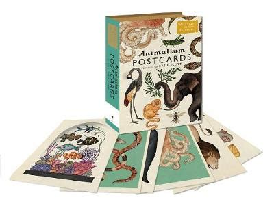 animalium postcards welcome to animalium postcards by katie scott waterstones