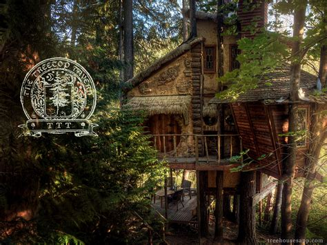 tree house tavern you ll never guess what s inside this treehouse jaw dropping boredombash