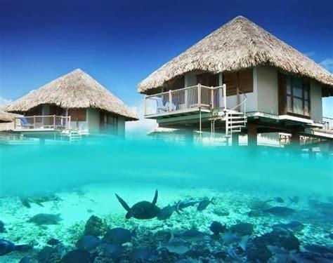 best overwater bungalows in moorea le meridien bora bora islands island hotels resorts