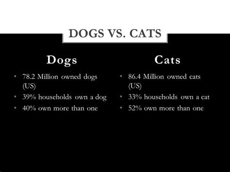 Compare And Contrast Cats And Dogs Essay by Compare Contrast Dogs Vs Cats Essay