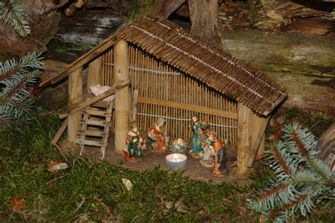 images of christmas hut free images forest moss hut jungle child christian