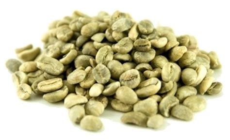Green Coffee Bean green coffee beans linked to weight loss new study reveals foodbeat