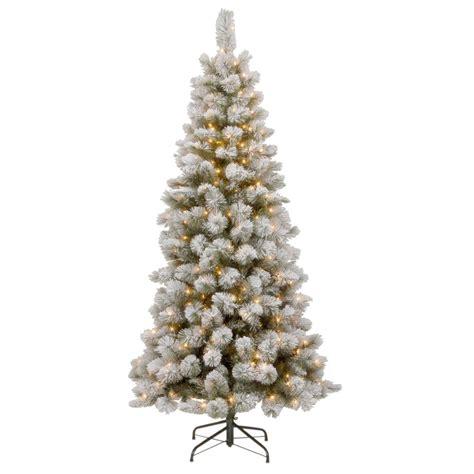 slim snowy christmas tree