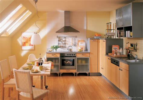 European Kitchen Design European Kitchen Cabinets Pictures And Design Ideas