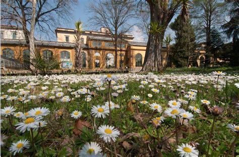 giardino dei semplici firenze il giardino dei semplici radici fiorentine da 470 anni