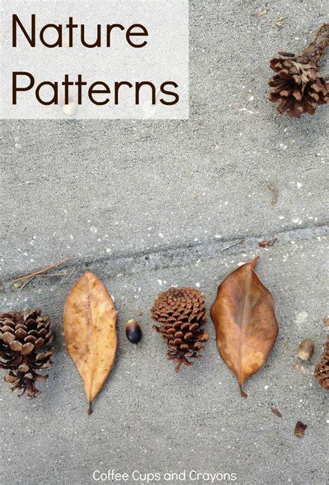 patterns in nature biology syllabus 17 best ideas about patterns in nature on pinterest