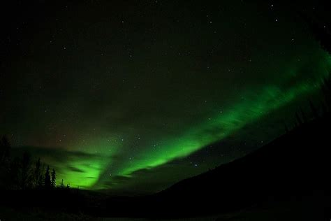 chena springs northern lights discount cruises last minute cruises notice