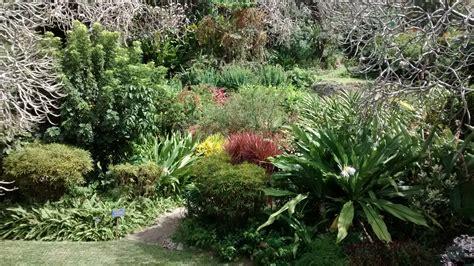 andromeda botanic gardens andromeda botanic gardens barbados contact