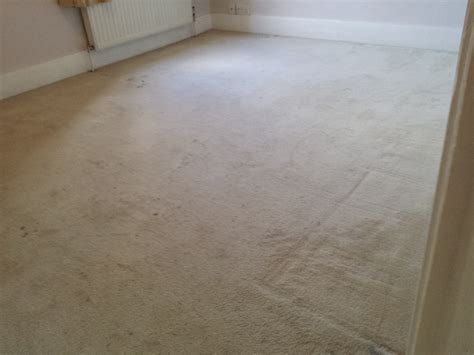 upholstery cleaning oxford professional carpet cleaners oxford from