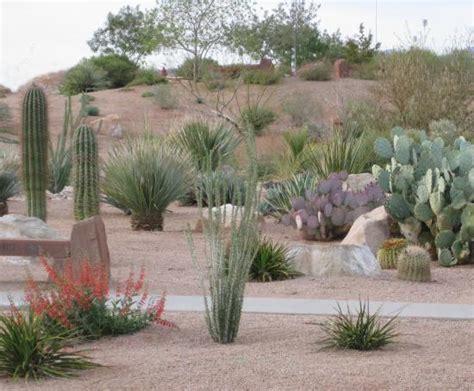 Landscape Ideas Desert Southwest Desert Landscaping Ideas