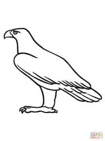 Golden Eagle Coloring Page golden eagle coloring