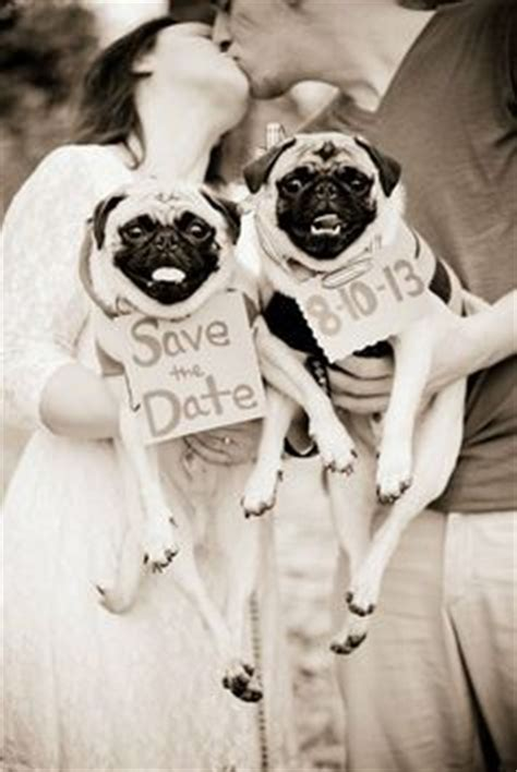date pug free 1000 images about save the date on save the date save the date
