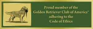 golden retriever breeders san antonio goldenwind golden retrievers golden retriever breeders puppies