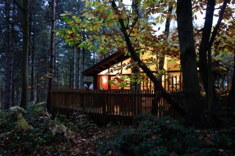 room picture of forest holidays sherwood forest