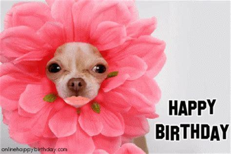 happy birthday puppy gif morning texags