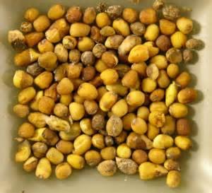 Specialty cropportunities carinata