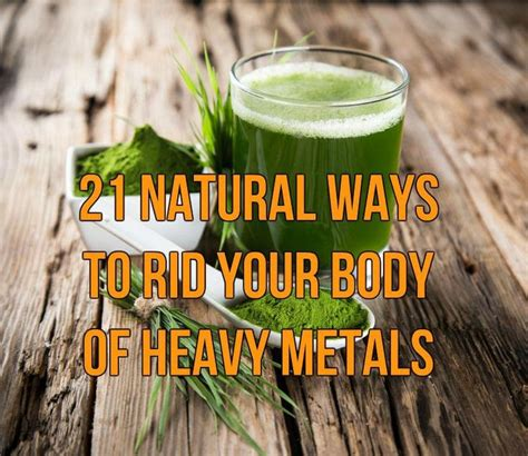 Signs That A Heavy Metal Detox Is Working by 1000 Ideas About Mercury Poisoning On Heavy