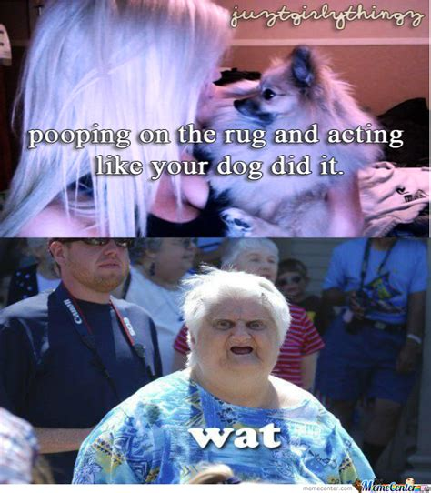 Wat Meme - toothless old lady wat meme pictures to pin on pinterest