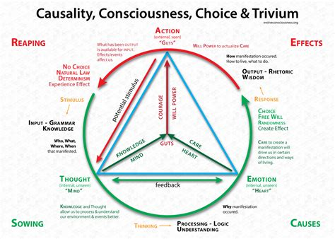 trivium method of thinking and learning modalities of thought language and reality pt 2