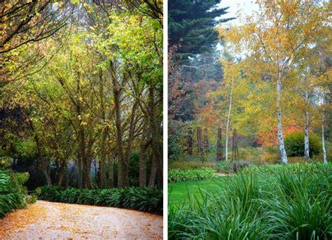 Garten Gestalten Trockener Boden by Gartengestaltung Ideen Trockene Gebiete Wieder Bl 252 Hend