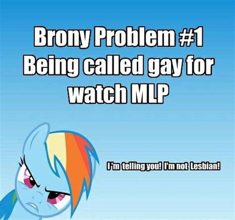 Know Your Meme Brony - 17 best images about brony problems on pinterest doctor