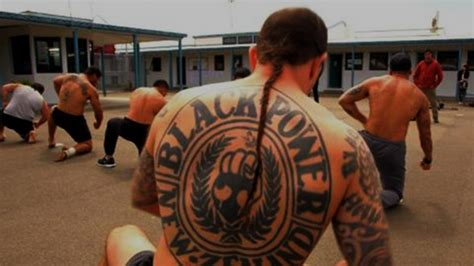 average tattoo prices nz locked up warriors documentary heaven