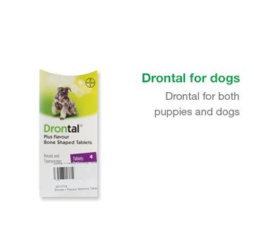 Drontal For drontal for dogs and cats worm treatment chemist direct