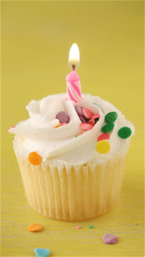 cupcake gif cupcake gif find on giphy