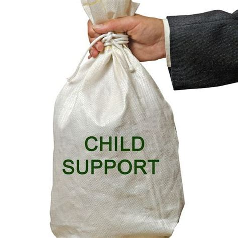 why i refuse to pay child support the socraddock method