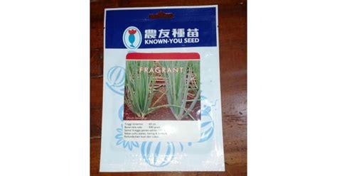 Known You Seed Fragrant Benih Bawang Daun 10 Gram Jual Benih Daun Bawang Fragrant 5 Gram