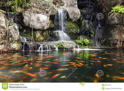 Zen Water Garden Koi Fish In Pond At Garden With A Waterfall Stock Image