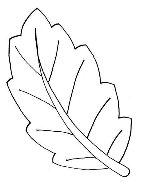 free coloring pages of leaf shapes