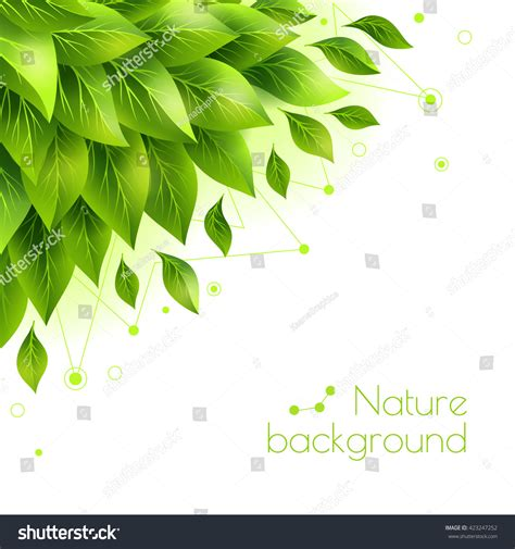 banner design for nature green leaves banner copy space vector stock vector
