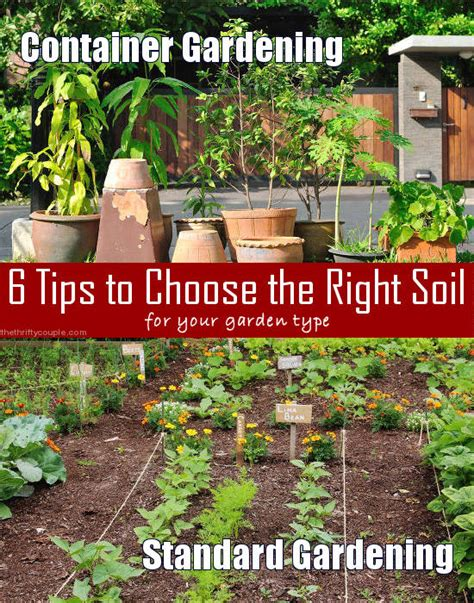 6 Tips To Choose Best Cheese by 6 Tips To Choose The Right Soil For Your Garden Type