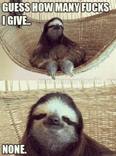 Pervy Sloth Meme - 80 best images about sloths on pinterest creepy sloth