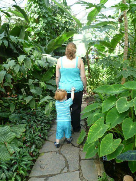 garten chemnitz ausflugsziel botanischer garten chemnitz