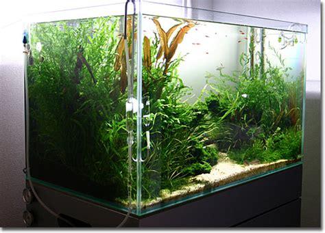 aquarium eco 75cm aquarium 201 clairage led le pour eau
