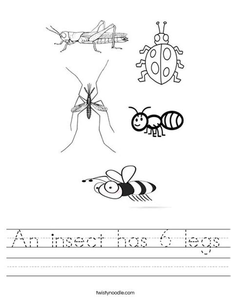 kids bug and insects worksheets an insect has 6 legs worksheet twisty noodle