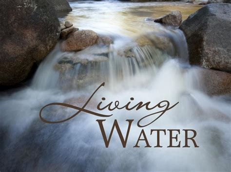 jesus is the living water woman at the well three ways of life a woman transformed by the gospel