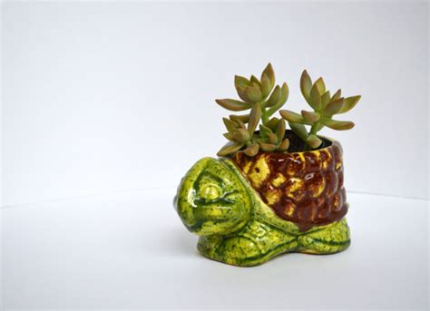 turtle planter vintage ceramic turtle planter by theskinnyvintage on etsy