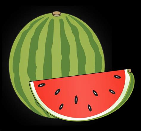 can pomeranians eat watermelon watermelon related keywords watermelon keywords keywordsking