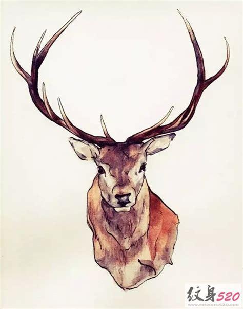 animal head tattoo tumblr 好看的麋鹿纹身手稿素材