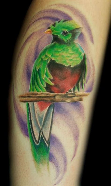 quetzal tattoo meaning quetzal bird tattoo meaning tattoo collection