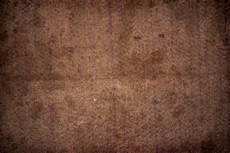 dirt carpet and rug shoo how to clean dirt stains carpet home carpet cleaning satsu