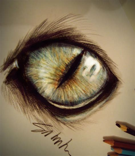 cat eye drawing cat s eye by kinemesi on deviantart