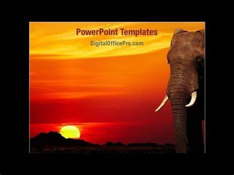 African Elephant Powerpoint Template Backgrounds Digitalofficepro 00042 Youtube Elephant Powerpoint Template