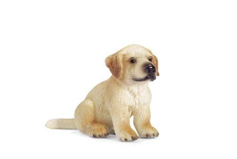 golden retriever puppies tasmania 211 best images about toys figures on toys wars clone wars