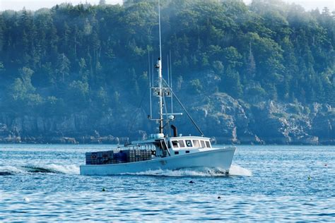 lobster boat ride 7 can t miss things to do in bar harbor maine cruise