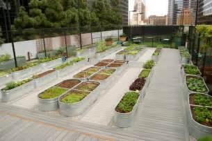 raised bed designs vegetable gardens